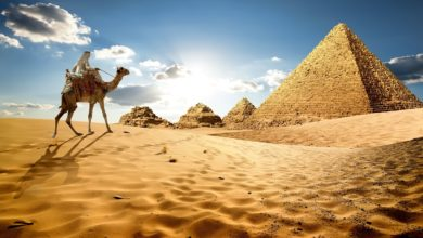 Photo of مصر تتجه نحو اقتراض إضافي من صندوق النقد الدولي لمواجهة أزمة كورونا